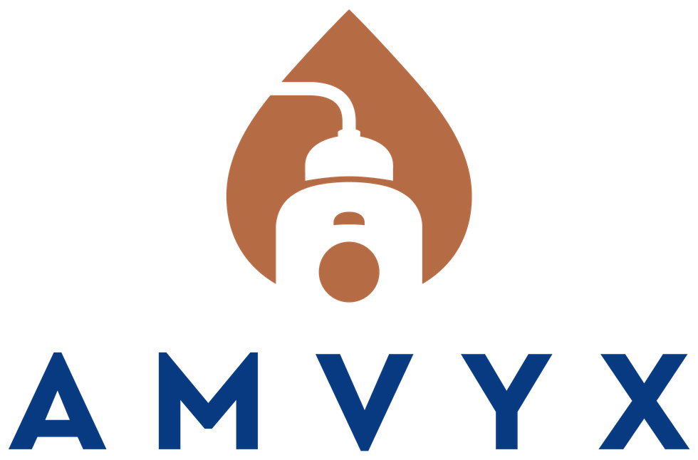 Amvyx 2019 A RECORD YEAR FOR AMVYX IN TURNOVER, PROFITS AND MARKET SHARE