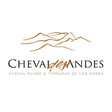 Amvyx Cheval des andes