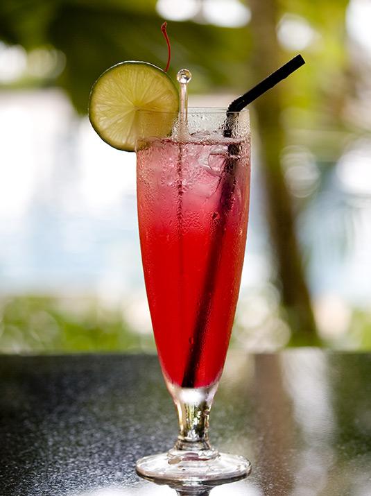 Amvyx MARIE BRIZARD Jolie cherry LIQUEUR Singapore Sling