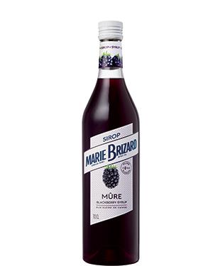 Amvyx Marie Brizard Blackberry Syrup
